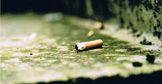 Cigarette Butts Kill Fish According to New Study
