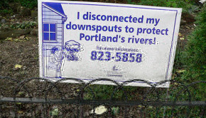 Portland promotes downspout disconnection