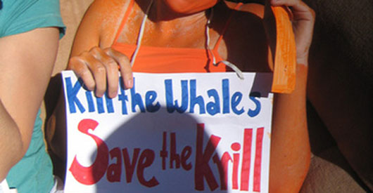 Save the Krill, Save the Whales