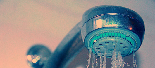 Study Reveals 30% of Showerheads Harboring Pathogens