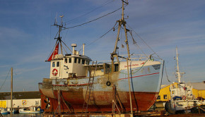 Subsidized trawlers largely to blame for overfishing