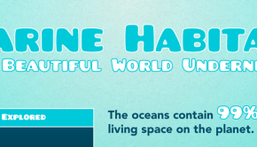 marine habitat infographic