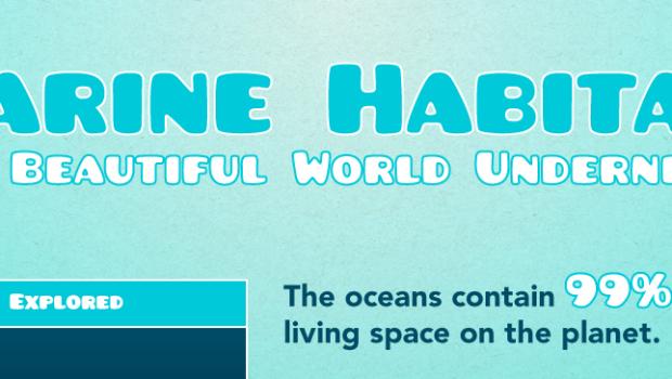 Shocking Ocean & Ocean Animal Facts