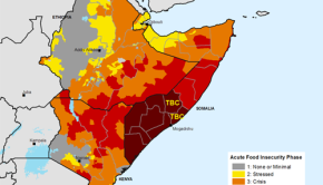 Africa Famine Map