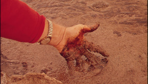EPA Official Takes Sample of Oily Mud