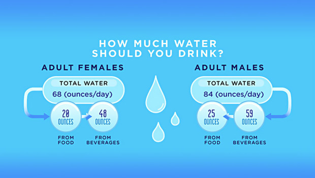 The Liquid of Life:  How Your Body Uses Water